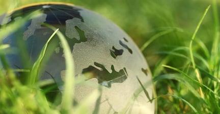 Globe in a field of grass
